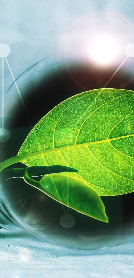 Regionaal Milieubeheer, Informatieplicht Energiebesparing, EML, RVO, Inspectie